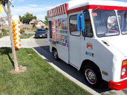 Ice Cream Truck for Childs Birthday